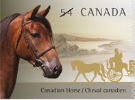 Canada stamp featuring Canadian Horse